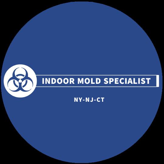 Indoor Mold Specialist