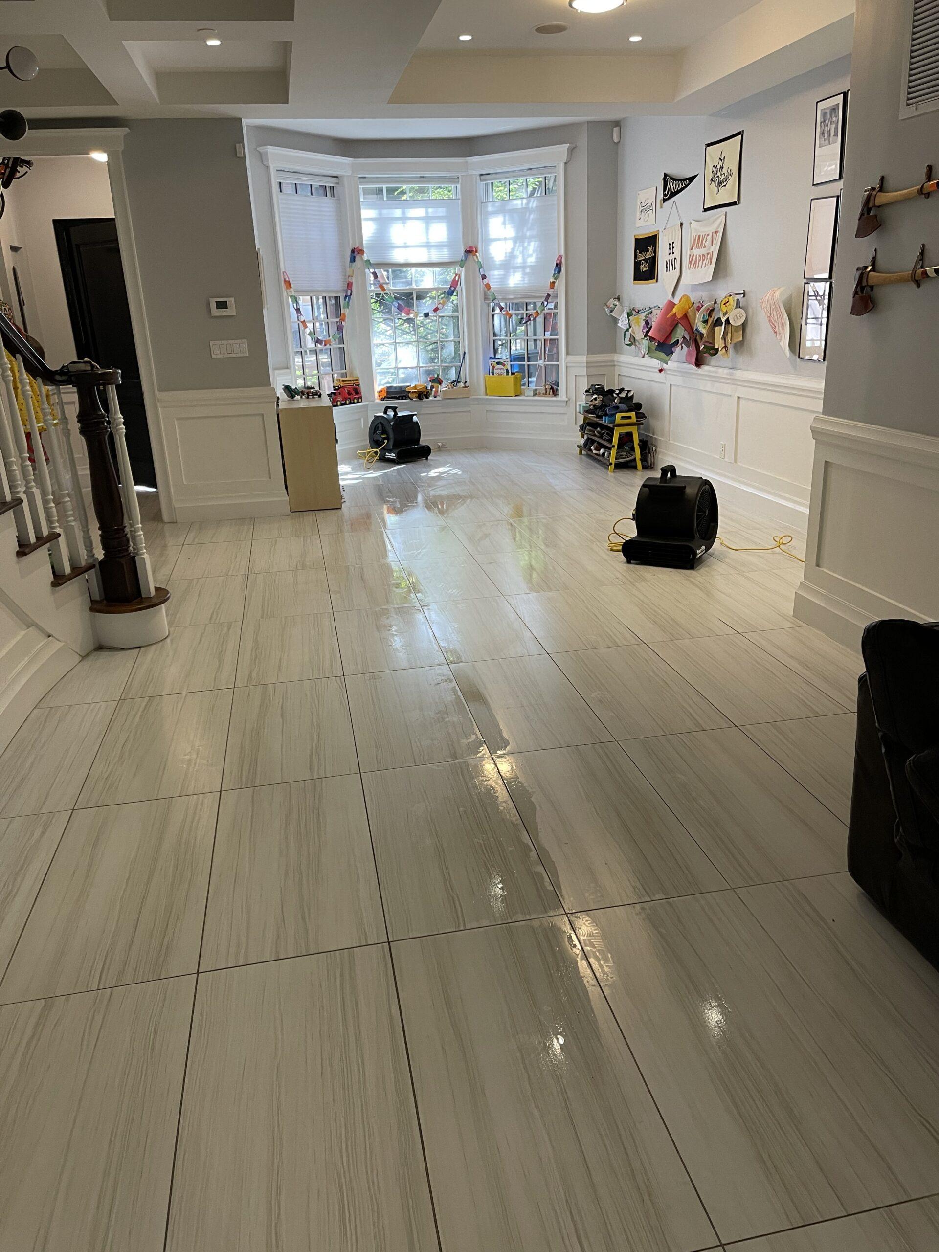 Indoor Mold Specialist- Mold Remediation Brooklyn, NY