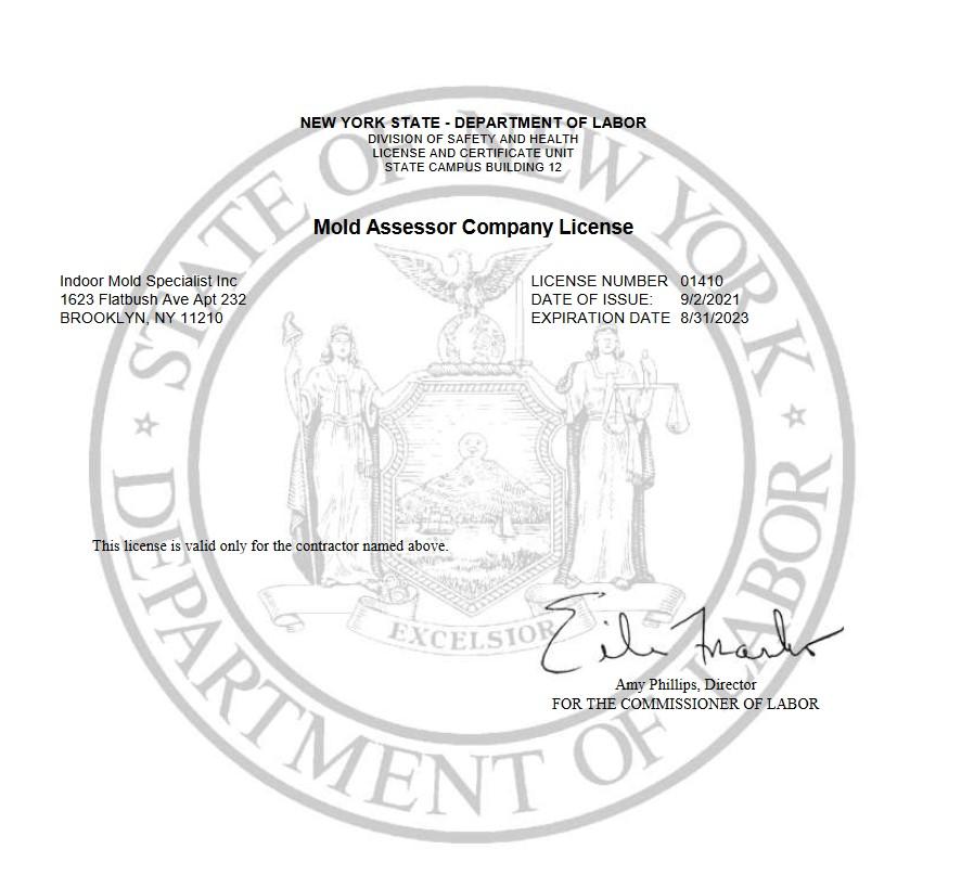 Mold Assessor Company License