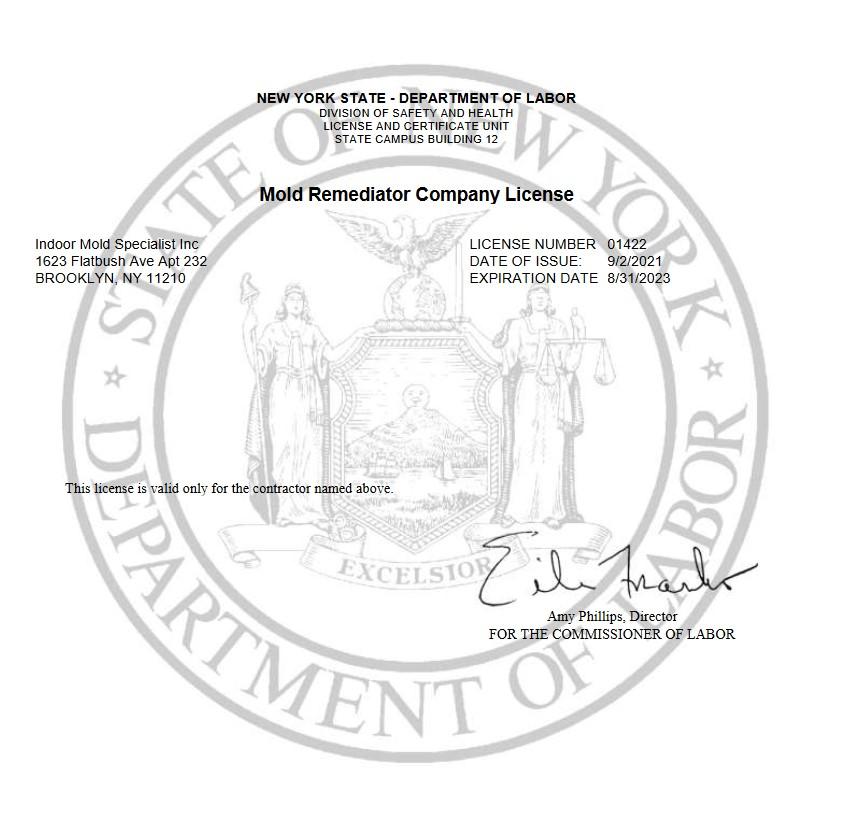 Mold Remediator Company License