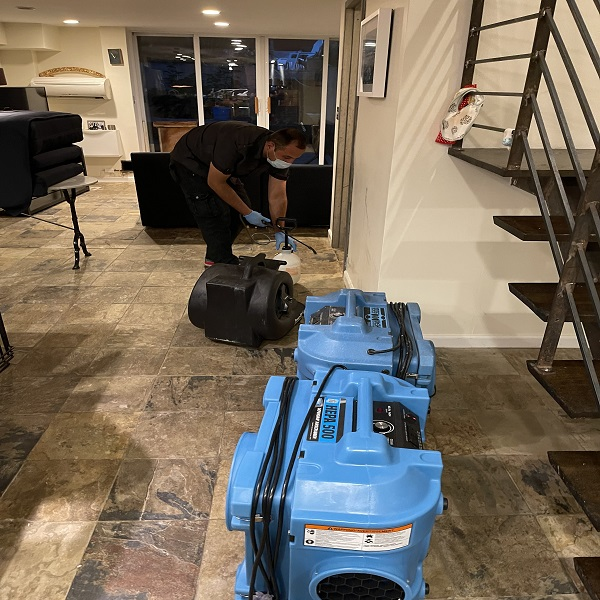 mold removal specialist in Manhattan
